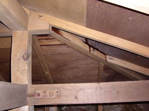 木造住宅の場合